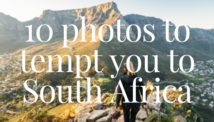 10 Pictures That Will Tempt You to South Africa